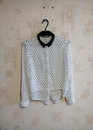 Тонкая легкая блуза в горох/ рубашка в мелкий горошек