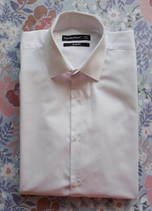 Торжественная рубашка, офисная, под галстук