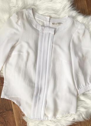 Белая блуза, блузка