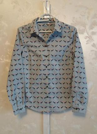 Хлопковая рубашка с птичками