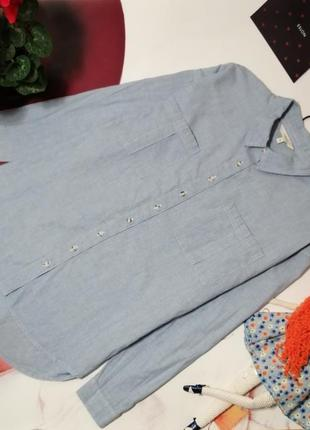 Базовая рубашка оверсайз next, 100% хлопок, размер 16/44