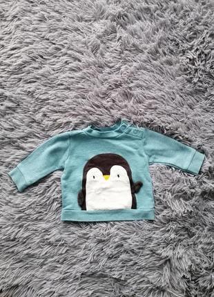 Кофта с пингвинчиком