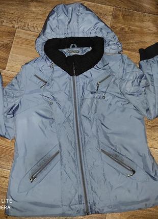Женская куртка (весна/осень,)