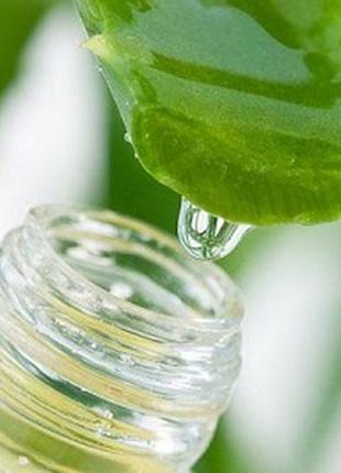 Сок алое-вера 100% натуральный (30 мл)