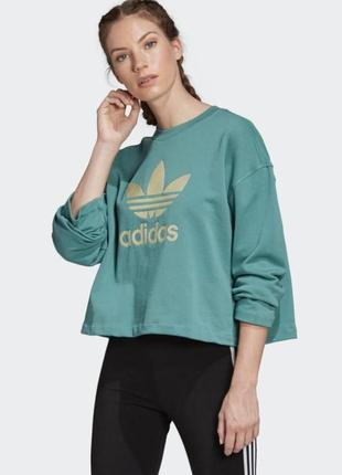 Кофта худи свитшот adidas originals premium оригинал с лого (с капюшоном и без капюшона)