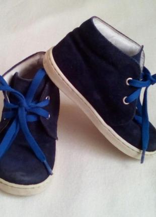 Детские замшевые кеды, ботинки pinocchio темно-синего цвета