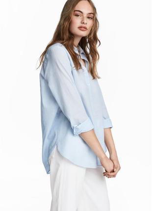 Голубая коттоновая рубашка hm