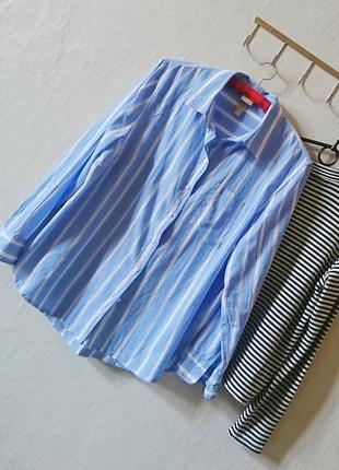 Трендовая полосатая котоновая рубашка 🔸 бренд h&m