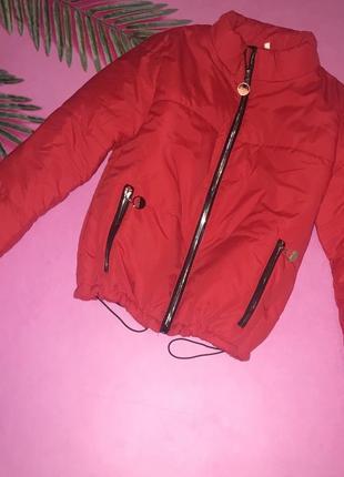 Куртка весна/осінь 450грн