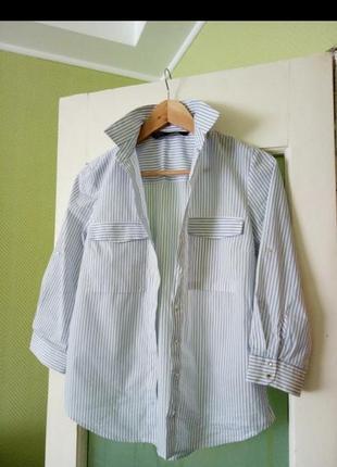 Белая в тонкую голубую полоску блуза рубашка с карманами коттон mango