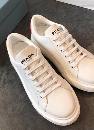 Базовые белые кроссовки кеды под prada