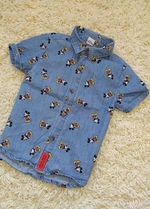 Стильная рубашка на малыша 9-12см primark