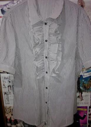 Блуза офисная.