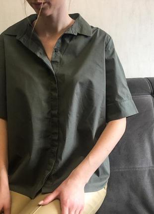 Рубашка цвета хаки cos ( m )