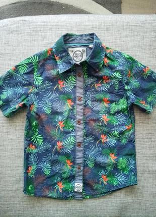 Тропічна сорочка
