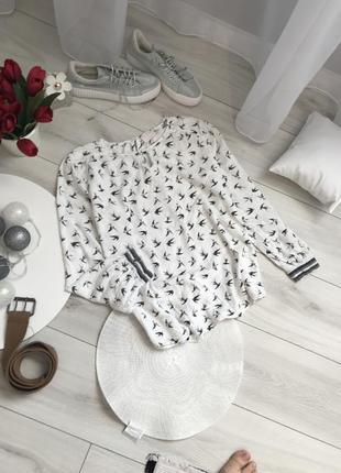 Блузка блюзка сорочка блуза кофта реглан