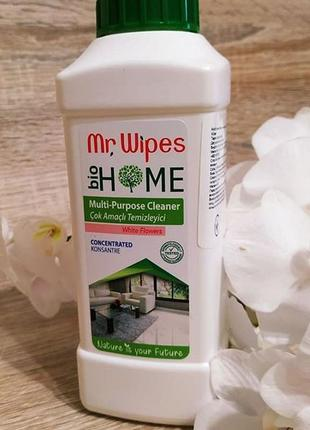 Мультифункціональний очищувач mr.wipers