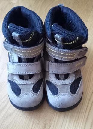 Черевики, сапоги, ботинки