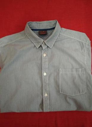 Стильная рубашка сорочка с длинным рукавом в полоску esprit