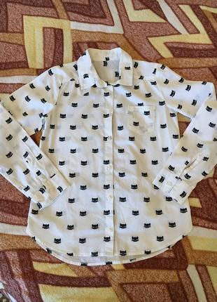 Рубашка з котиками котон