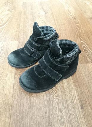 Ботинки полуботинки замша t. taccardi