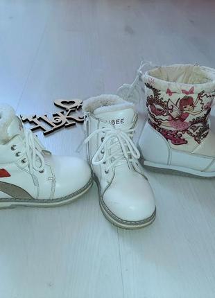 Зимние кожаные сапоги ботинки clibee + дутики tom.m  в подарок!