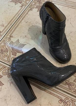 Стильные кожаные ботинки ботильоны miu miu /кожа/оригинал