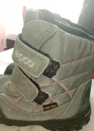 Термо сапоги термо ботинки мембрана gore tex 25р6 фото