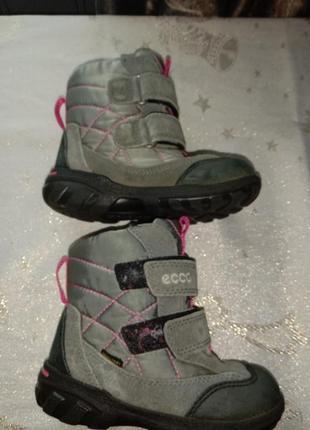 Термо сапоги термо ботинки мембрана gore tex 25р7 фото