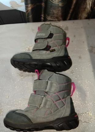 Термо сапоги термо ботинки мембрана gore tex 25р8 фото