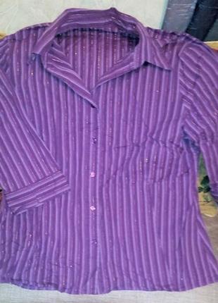 Рубашка коттон с откидным воротником