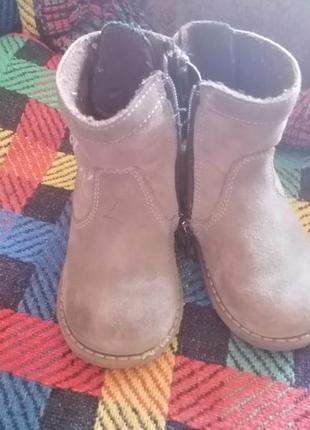 Сапоги, сапожки, деми обувь, деми сапоги