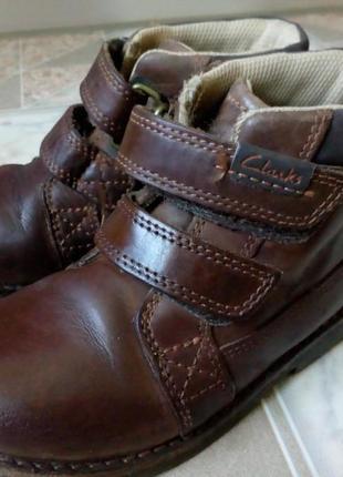 Кожаные ботинки clarks на мальчика