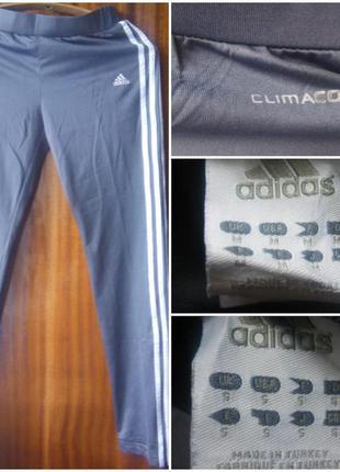 Спортивные штаны adidas climacool