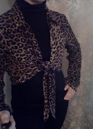 Болеро леопард