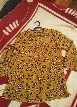 Нарядная блузка zara