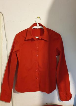 Рубашка офисная (натуральная)