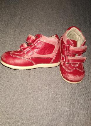 Стильные ботинки,кросовки на девочку 21р