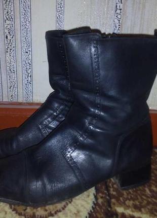 Оригинал! фирменные, деми ботиночки от laura conte
