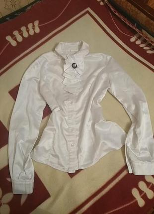 Классическая блуза petro soroka