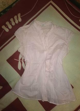 Милая блузка oodgi