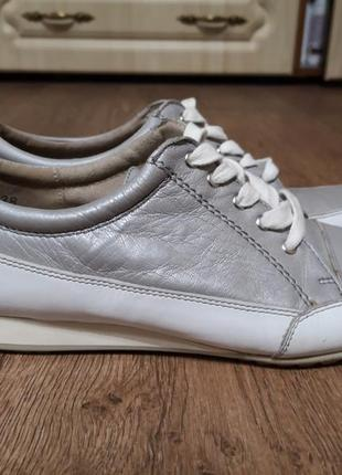 Туфлі caprice 38