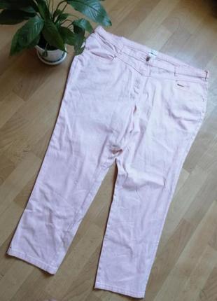 Акция 🌹пудровые брюки большого размера