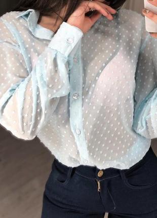 Голубая рубашка в горох