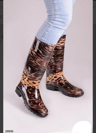 Резиновые сапоги с принтом леопардовые