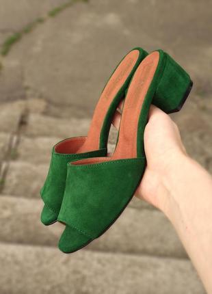 Шлепанцы мюли замшевые кожаные натуральные на низком  каблуке 4см