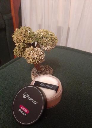 Розсипчасті рум'яна, 18г, цвет brickdust (кирпичный)