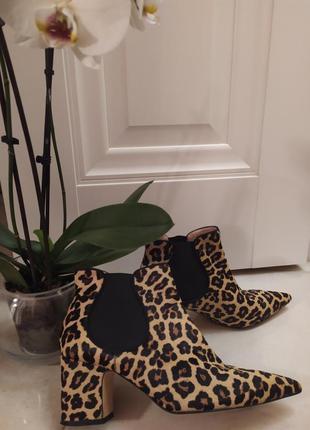 Стильные 2020 леопард ботинки zara сапожки челси