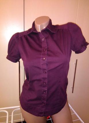 Блуза цвет марсала рубашка кофта