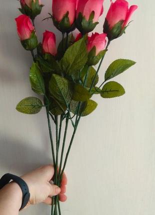 Гілочки троянди.